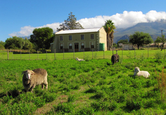 Waterkloof Guest Farm