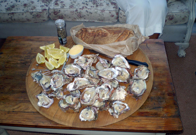 Dive for your own oysters at Brenton Beach