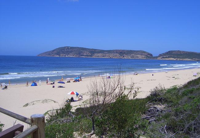 Drive 25 min to Robberg beach