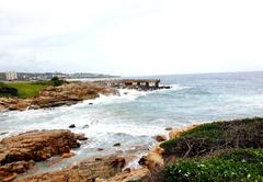 Whale Rock 20