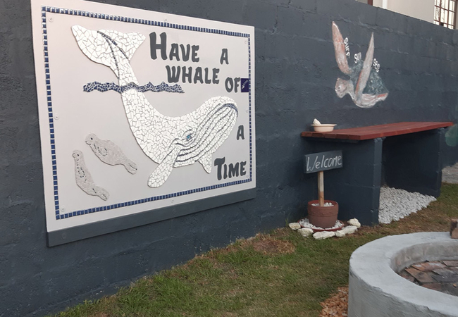 Whale Watch Accommodation