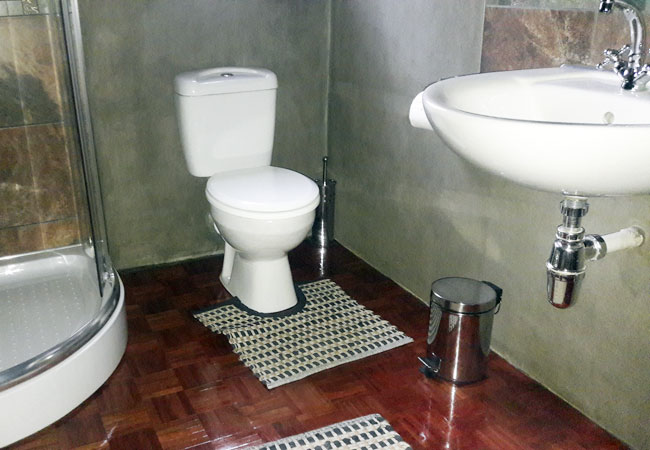 Nguni bathroom