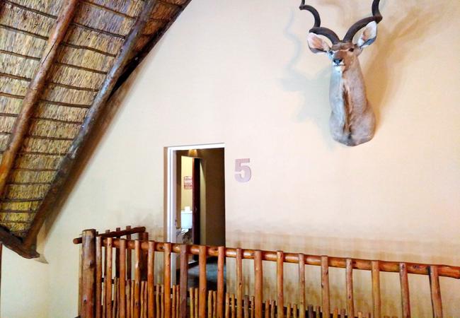 Room 5 Entrance