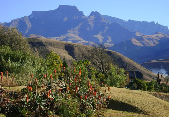 Stunning gardens and mountain views